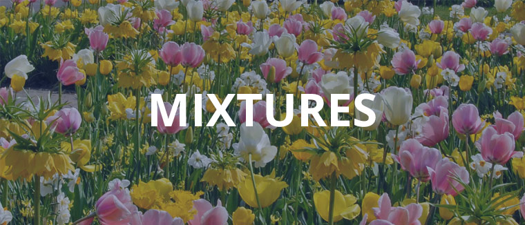 Mixtures assortment